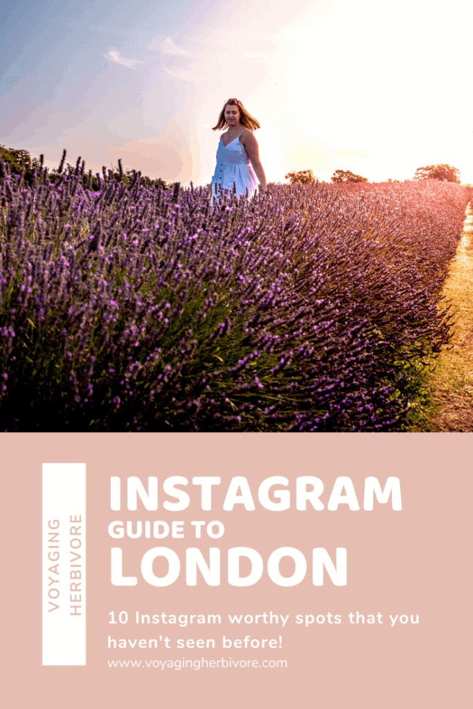 Instagram-Guide-to-London-683x1024