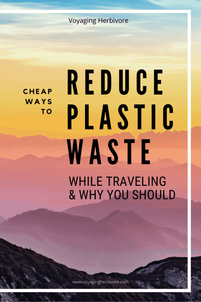reduce-plastic-waste-while-traveling-683x1024
