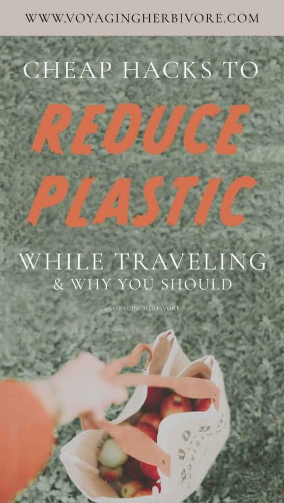 reduce-plastic-while-traveling-1-578x1024