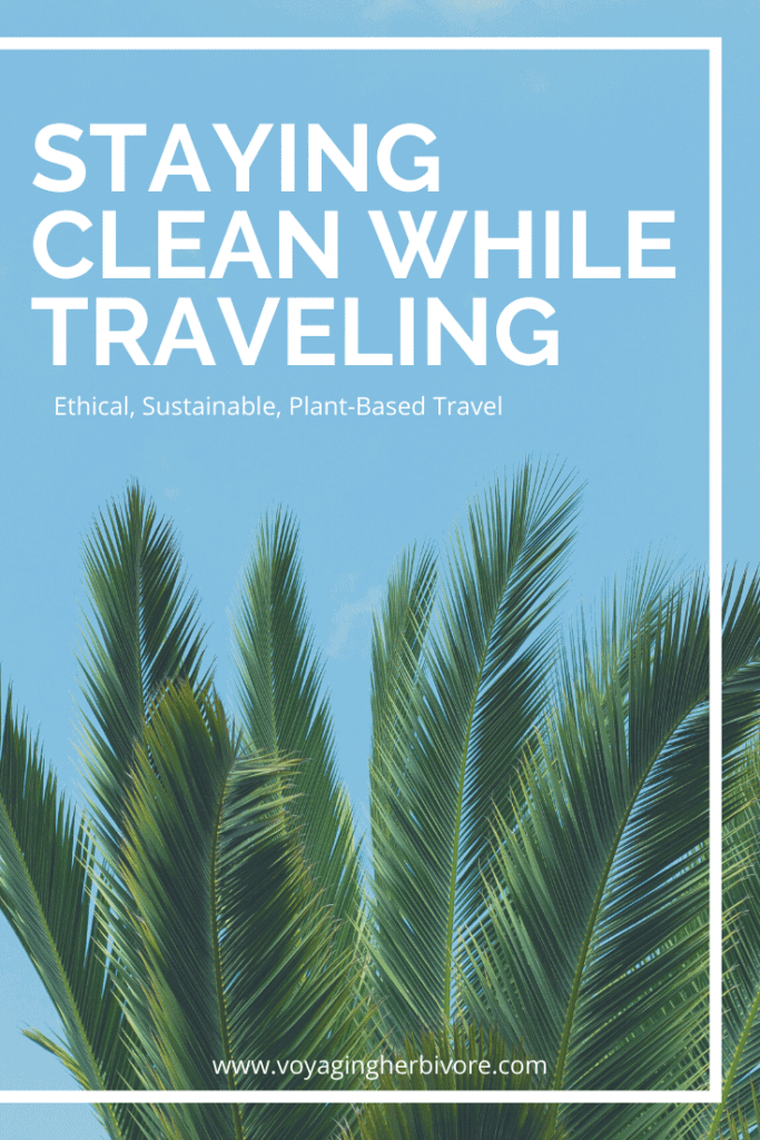 staying-clean-while-traveling-2-683x1024