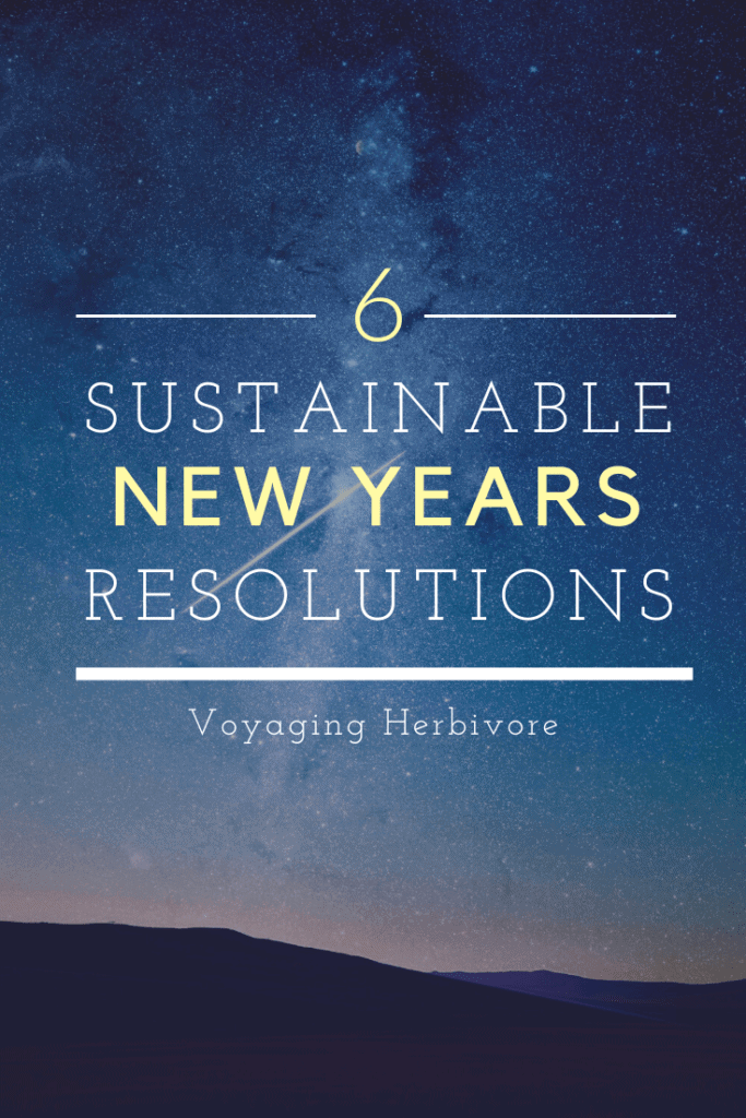 6-Sustainable-new-years-resolutions-for-travelers-pinterest-1-683x1024