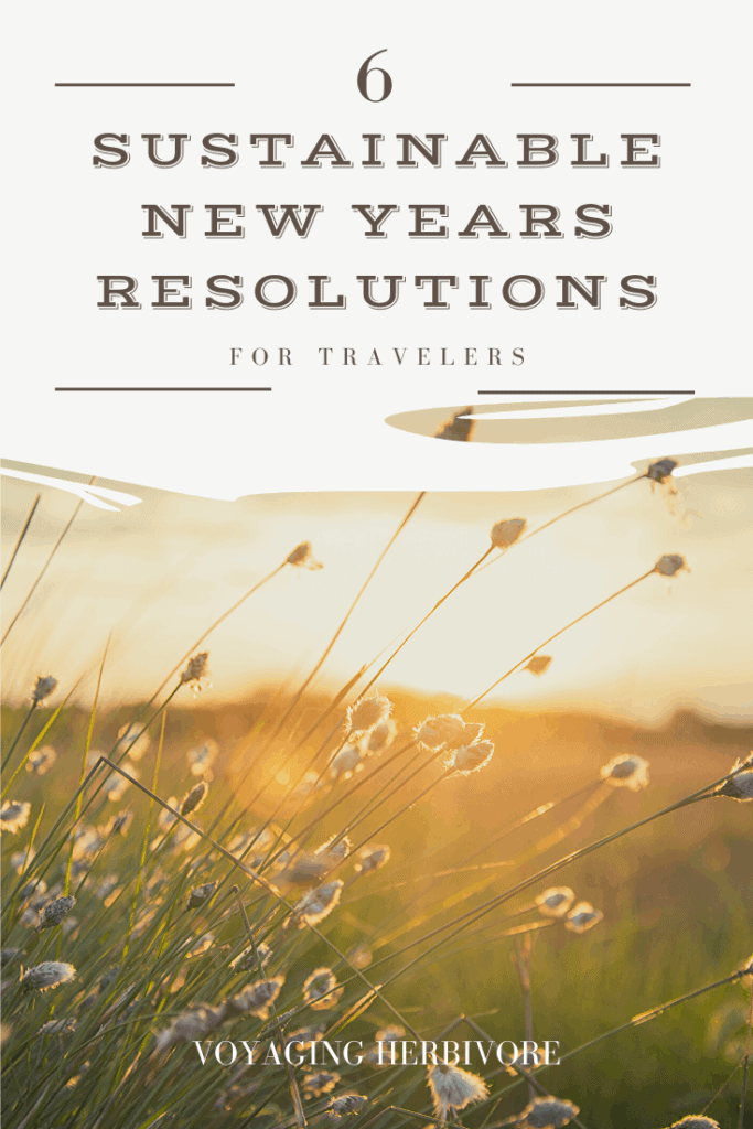 6-Sustainable-new-years-resolutions-for-travelers-pinterest-683x1024