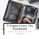 8-vegan-cruelty-free-carryon-essentials-featured-image-150x150