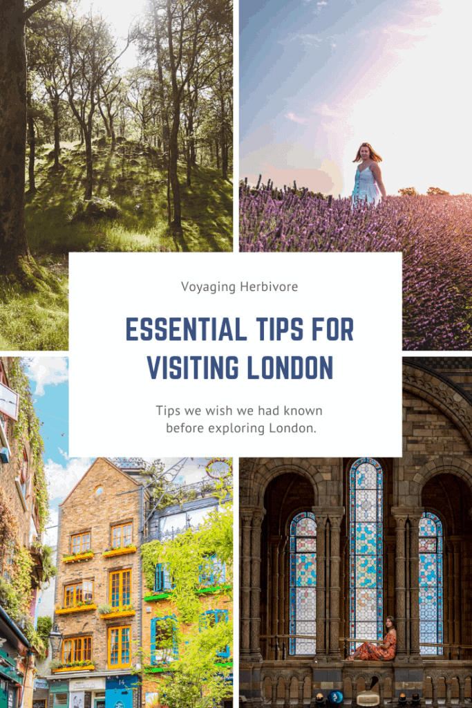 Essential-Tips-for-Visiting-London-683x1024