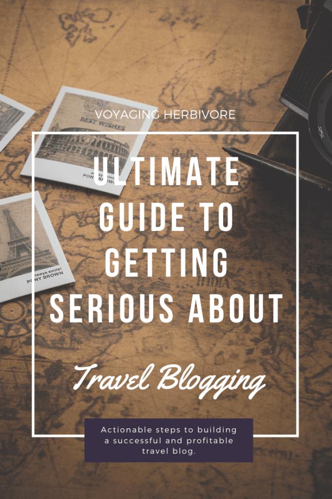 Ultimate-Guide-to-Getting-Serious-about-travel-blogging-5-683x1024