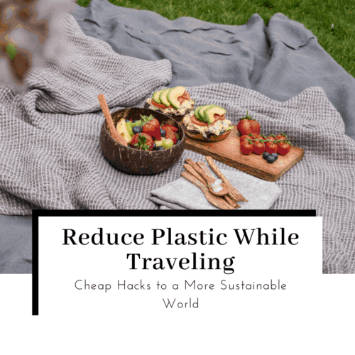 how-to-reduce-plastic-while-traveling-featured-image-500x500