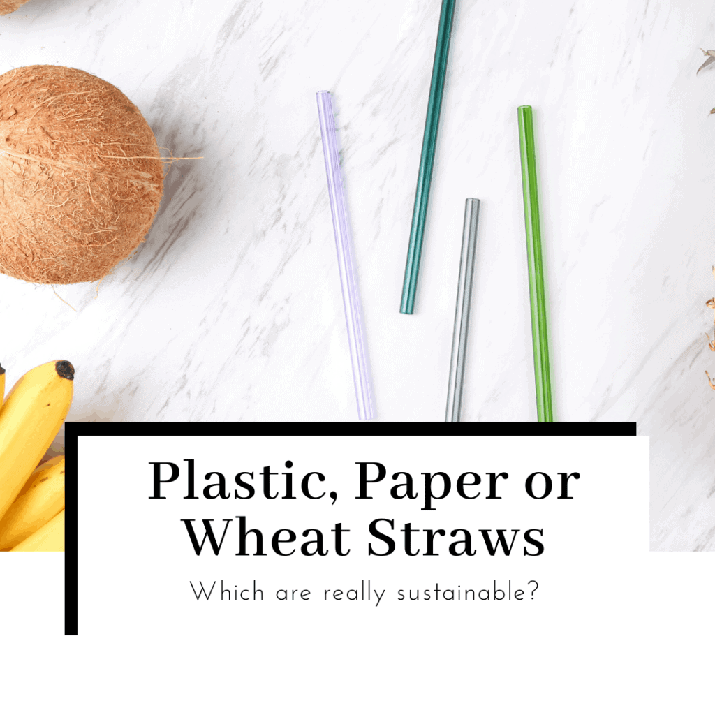 plastic-paper-or-wheat-straws-which-is-more-sustainable-featured-image-1024x1024