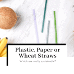plastic-paper-or-wheat-straws-which-is-more-sustainable-featured-image-150x150