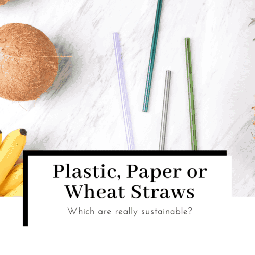 plastic-paper-or-wheat-straws-which-is-more-sustainable-featured-image-500x500