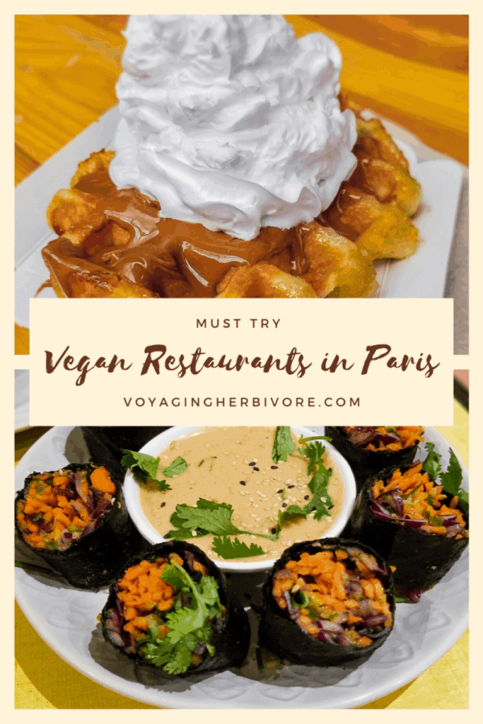 vegan-guide-to-paris-pinterest-3-683x1024
