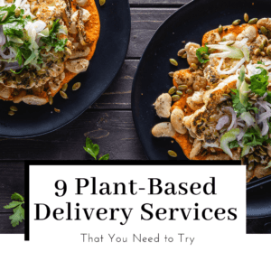 9-plant-based-vegan-meal-kits-delievery-services-featured-image-300x300