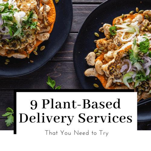 9-plant-based-vegan-meal-kits-delievery-services-featured-image-500x500