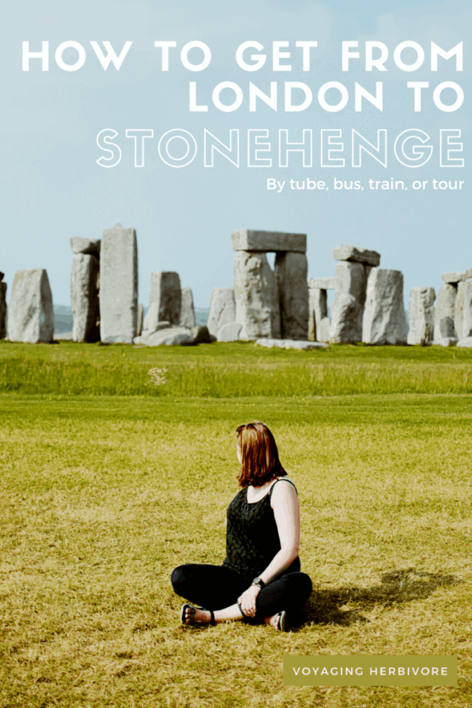 how-to-get-from-london-to-stonehenge-pinterest-2-683x1024
