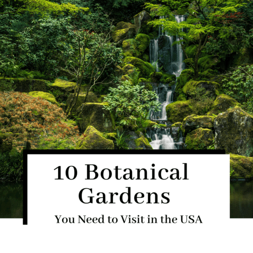 10-amazing-gardens-botanical-gardens-usa-featured-500x500