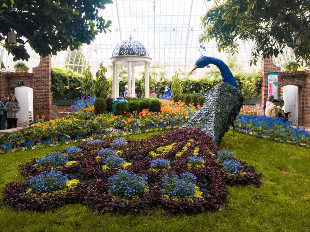 Phipps-Conservatory-Everywhere-Forward-1024x768