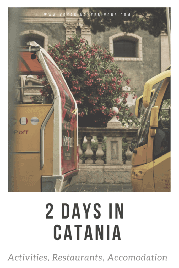 things-to-do-in-catania-pinterest-2-683x1024