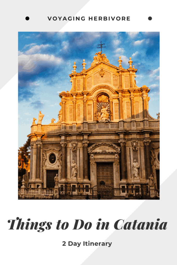 things-to-do-in-catania-pinterest-3-683x1024