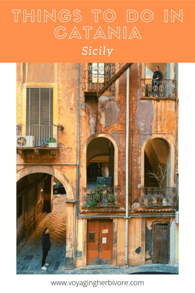 things-to-do-in-catania-pinterest-683x1024