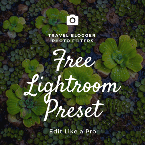 free matte Lightroom preset